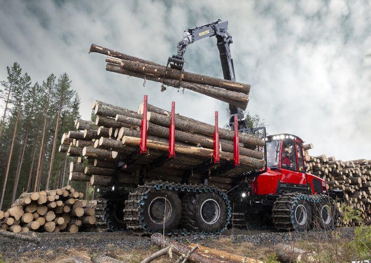 Сектор торгівлі деревиною на порталі Прозорро